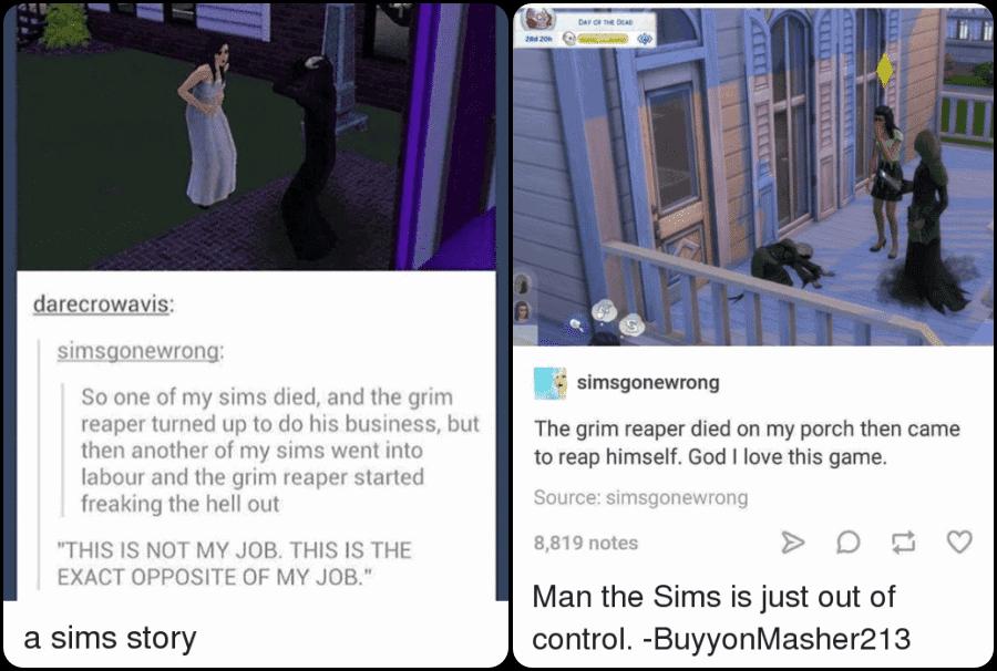 Video Game Logic - SIMS