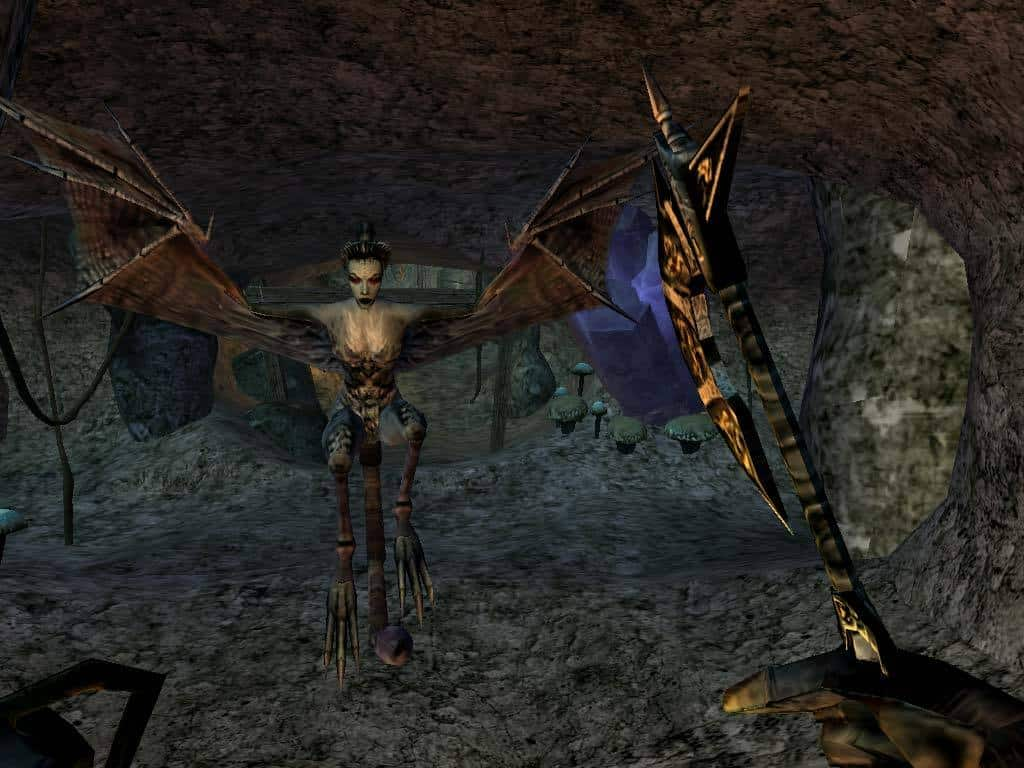 Morrowind games like skyrim