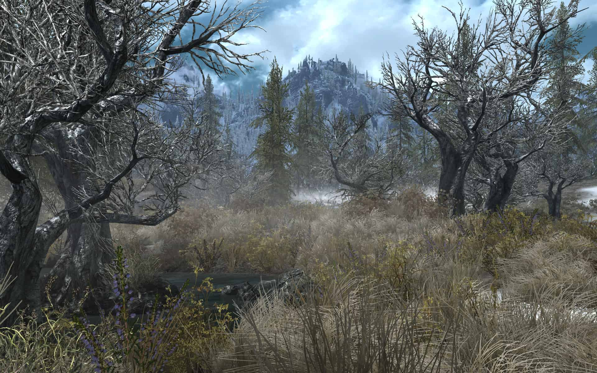 Skyrim Flora Overhaul best skyrim mods