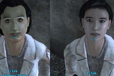 fallout new vegas mod redesigned