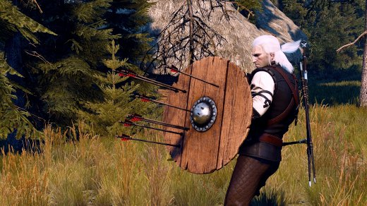 Witcher 3 Mods Shields